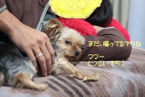 杏・ネムネム01