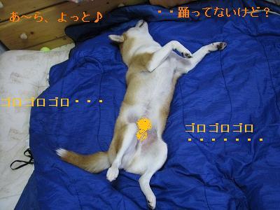s-IMG_4829 - コピー