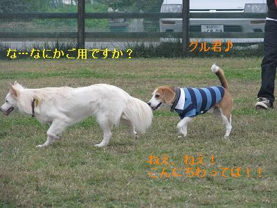 s-IMG_4124.jpg
