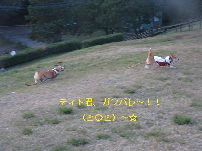 s-IMG_4228.jpg
