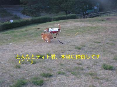 s-IMG_4229.jpg