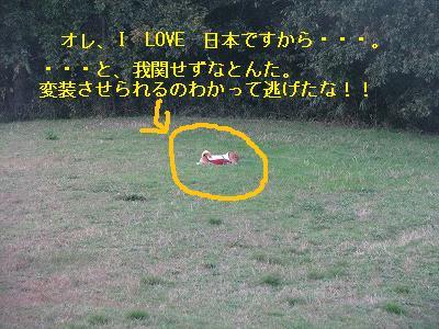s-IMG_4260.jpg