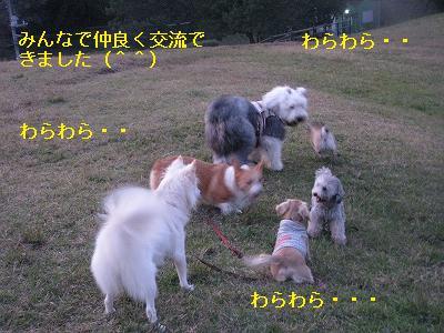 s-IMG_4284.jpg