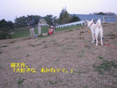 s-IMG_4422.jpg