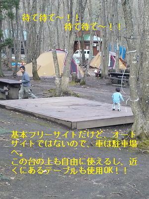 s-PAP_0008_20091127090727.jpg