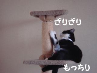 はぎとタワー1