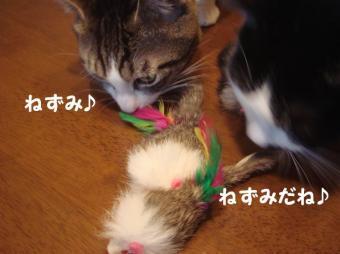 まりりんさん8