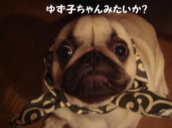まりりんさん9
