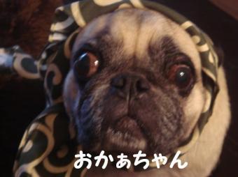 まりりんさん10