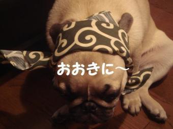 まりりんさん12