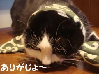 まりりんさん14