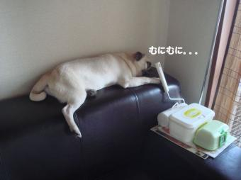 へりで寝る