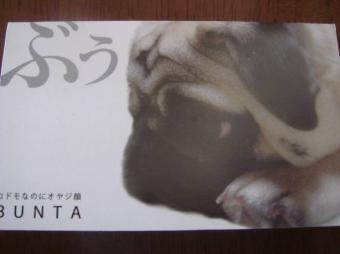 kaobuさん2