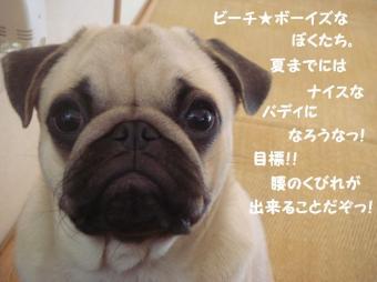 kaobuさん17