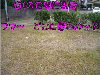 CIMG2925 (1)