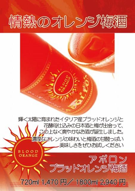 s-アポロンA4 ブログ用