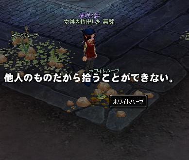 mabinogi_2009_07_19_005_20090723111451.jpg