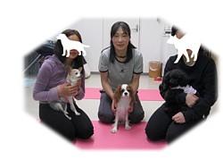 20090124yoga.jpg