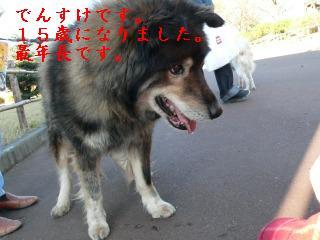 20071124091330.jpg