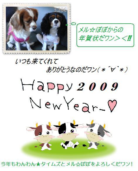 AHAPPYNEWYEAR2009!!