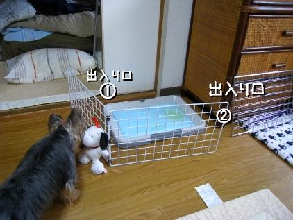 001_20090117195333.jpg