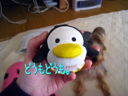 001_20090207200647.jpg