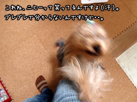 001_20091114200431.jpg
