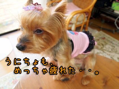 002_20090923173922.jpg