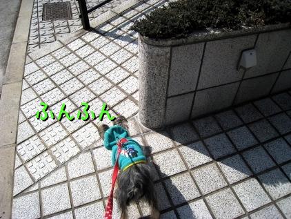 003_20090218174503.jpg