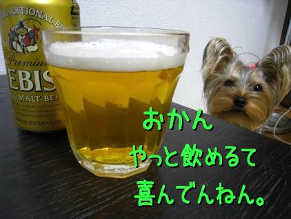 015_20090117195344.jpg