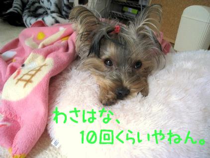 020_20081128183242.jpg