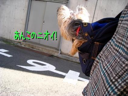 020_20090128173715.jpg