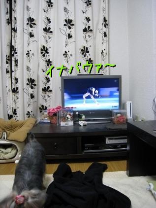 068_20090113195227.jpg
