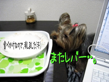0_20090328184929.jpg
