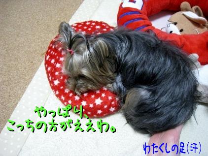 10_20090402194632.jpg