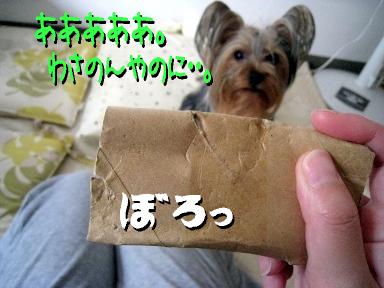 10_20090524153119.jpg