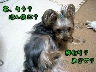 10_20090602185923.jpg