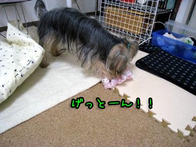 10_20090703193526.jpg