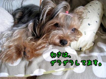 10_20090719193428.jpg