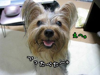 10_20090721195310.jpg