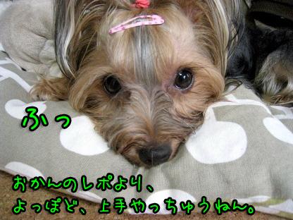 10_20090724183203.jpg