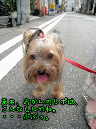 10_20090726125742.jpg