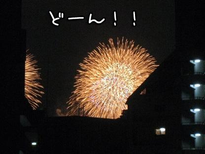 10_20090801204321.jpg
