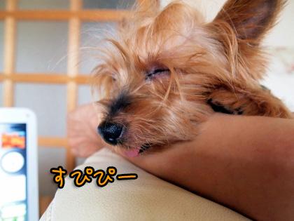 10_20090812204511.jpg