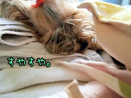 10_20090820162231.jpg