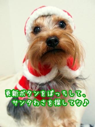 10_20091218193204.jpg