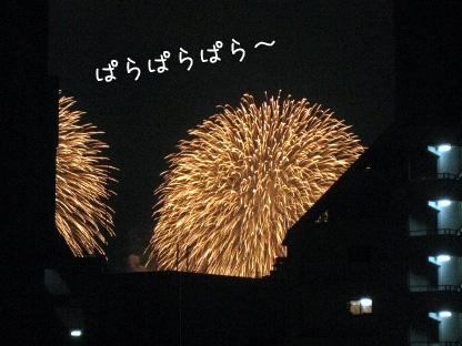 11_20090801204321.jpg