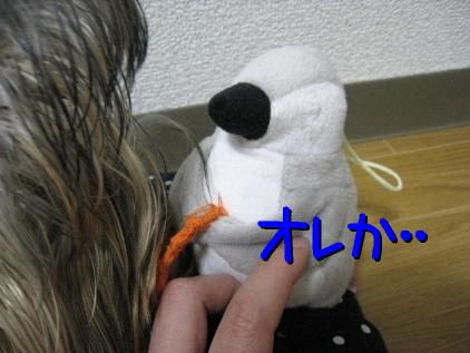 1_20090307212333.jpg
