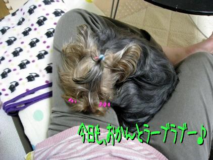 1_20090419190306.jpg