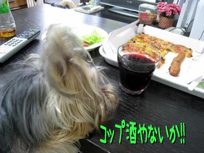 1_20090510182807.jpg